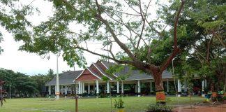 Salah satu titik pohon yang diganti dengan Tabebuya di depan tribun pantai Seruni. (Berita.news/Fitriani Aulia Rizka).
