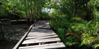 Keberadaan jembatan Pantai Indah Jalan Dewa Ruci di Pulau Bunyu Kabupaten Bulungan Provinsi Kalimantan Utara sudah memprihatinkan. (BERITA.NEWS/Andi Wakka Riansyah)