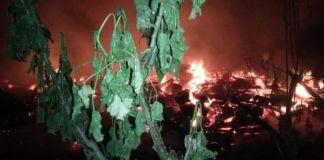 Situasi kebakaran di Desa Lumpangan. (BERITA.NEWS/Saharuddin).