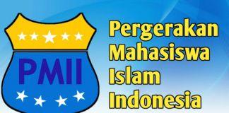 Foto : Logo PMII (int).